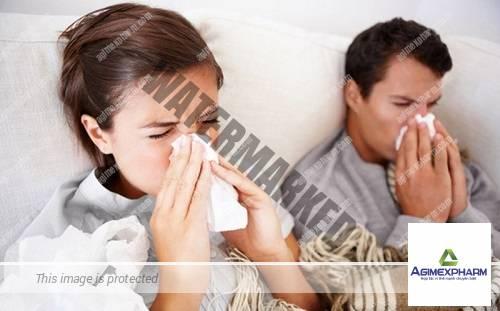 Thực phẩm giúp trị cảm lạnh hiệu quả