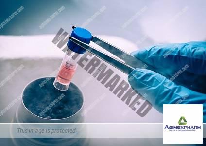 Có cần thiết lưu trữ tế bào gốc máu cuống rốn của con?