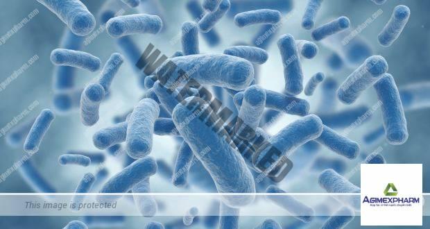 Vi khuẩn kháng kháng sinh có thể lây từ người này sang người khác