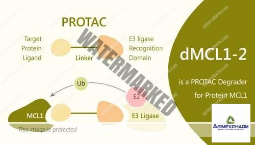 Thuốc mới 'đánh bật' các protein gây ung thư