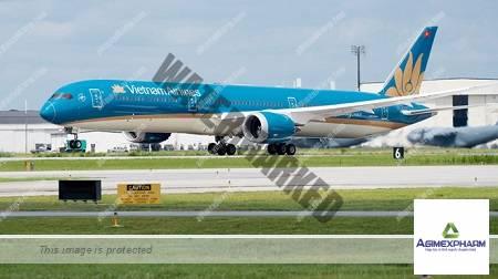 Vietnam Airlines dừng khai thác tất cả đường bay quốc tế